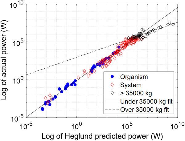 Power of organisms vs. machines